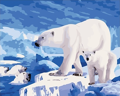 Polar Bears in the Arctic - 1/5 Complexity