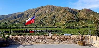 Wine tour in chile