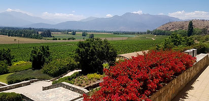 Wine tour santiago chile