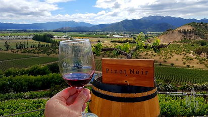Winery tour in Chile