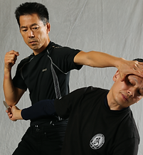 Menamy Mitanes, Systema Instructor in Los Angeles, CA