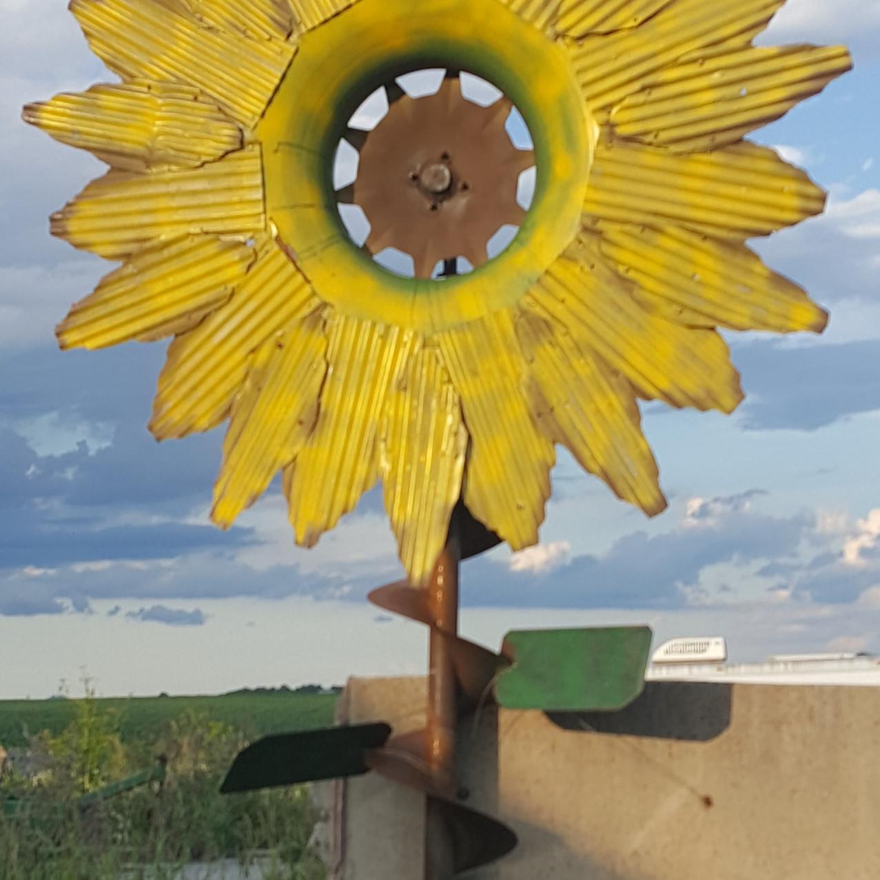 Barn Tin Sunflower