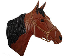 Tête de cheval brune