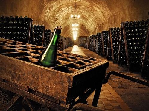 Экскурсия из Кисловодска - Завод шампанских вин