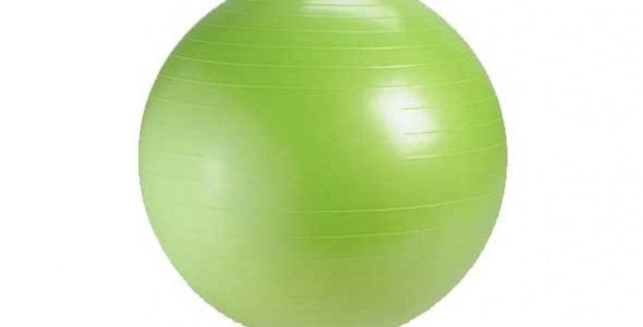 Protech Anti-Burst Mini Ball 20CM