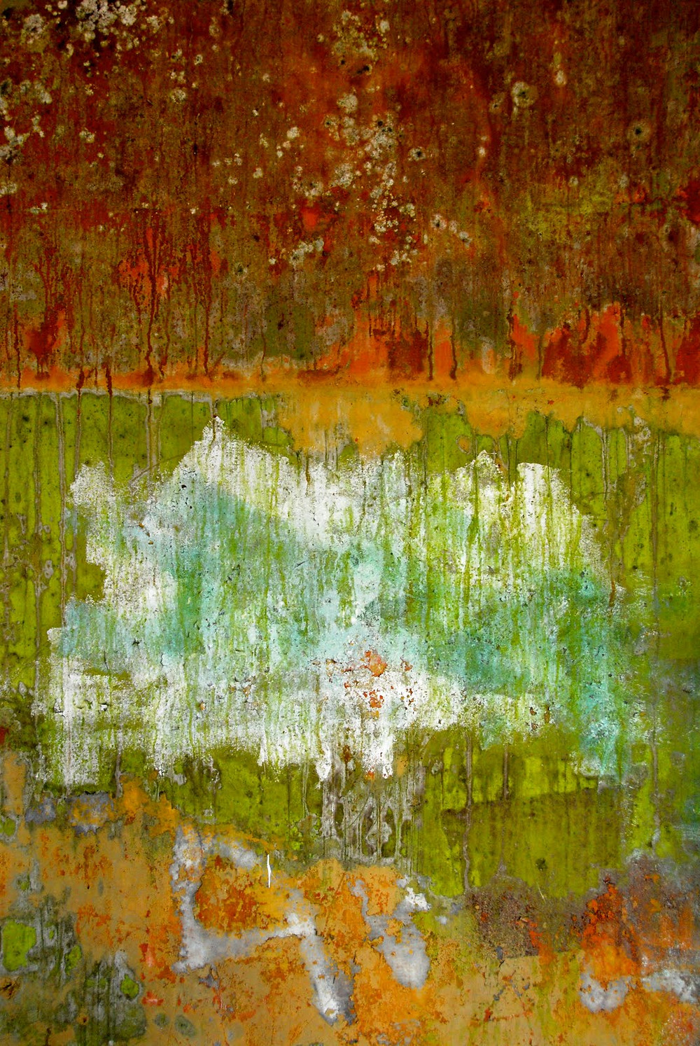 Picasa - bunker9.jpg
