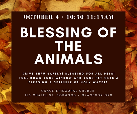 Blessing of the Animals 1 (1).png
