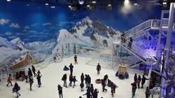 avpl_coldchain_snow_amusement_park_solut