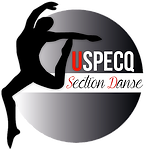 Logo section danse.png