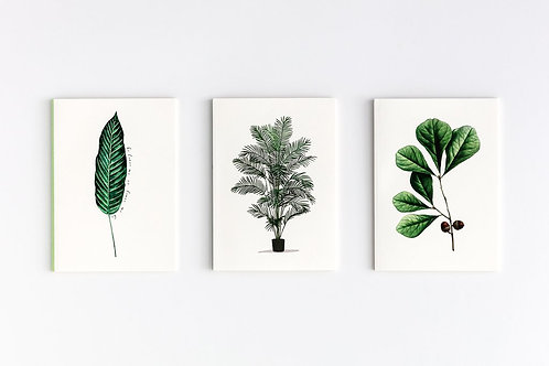 GREEN SERIE Set of 3 Notebooks