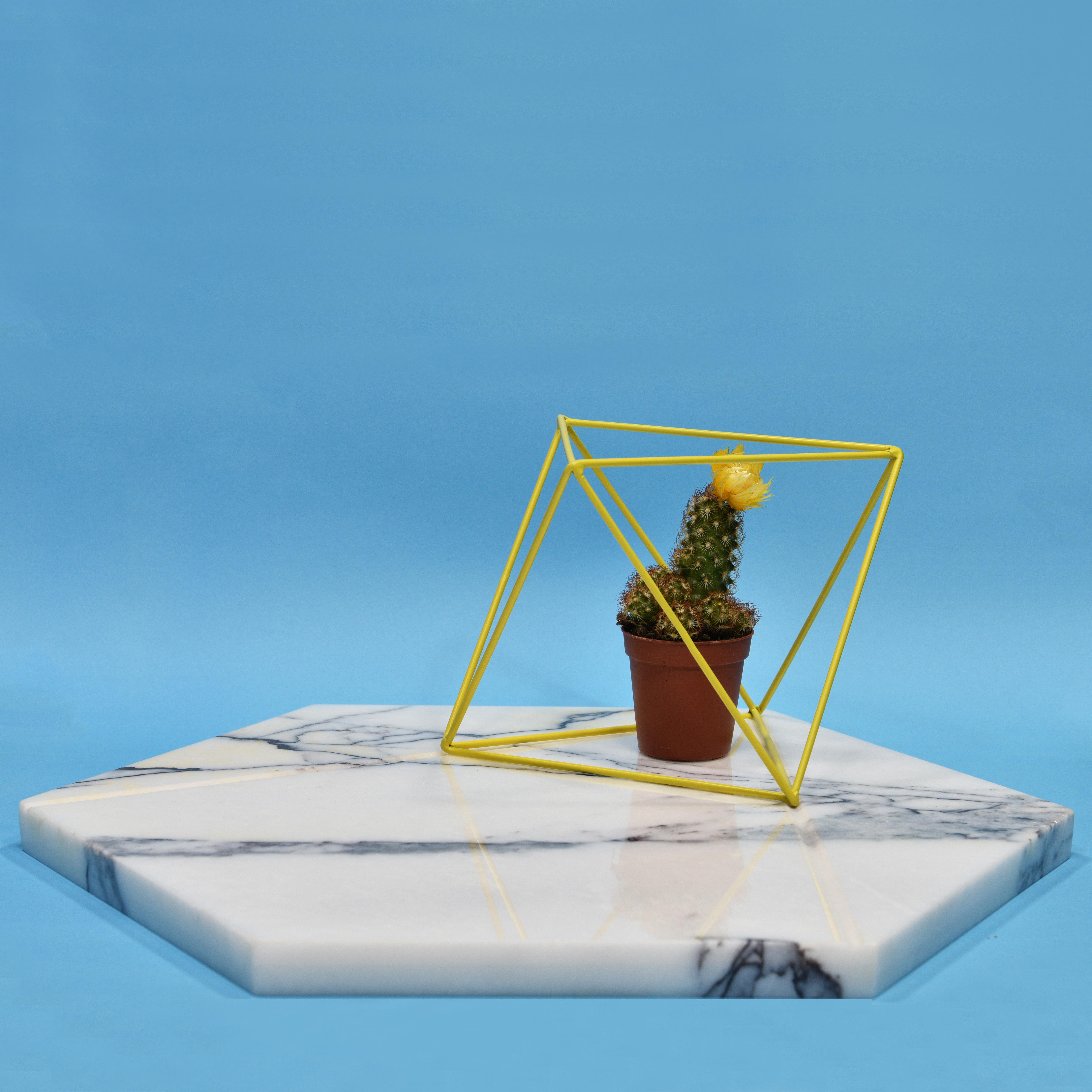 mudalla tray composition-emnastudio