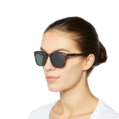 SUN NAUTIC Tortoise Sunglasses