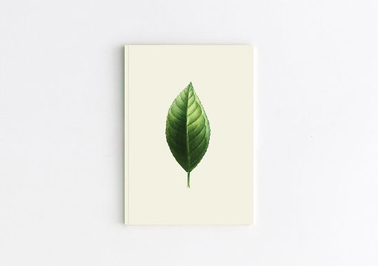 CITURS LIMON Notebook