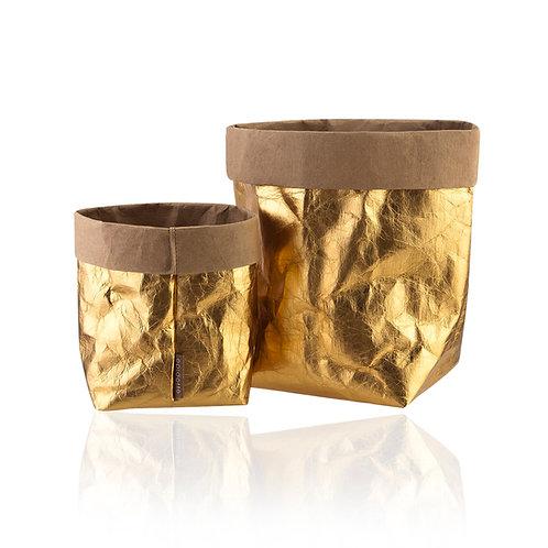GOLD Sacksy shiny