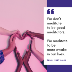 """We don't meditate to be good meditators. We meditate to be more awake iin our lives."""""""