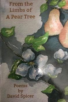 IMG_0858 Pear Tree_edited.jpg