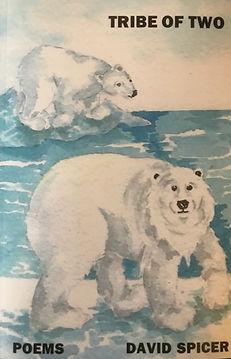 polar bear_edited.jpg