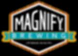MagnifyWebLogo.png