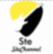 stefano stefanini stechannel logo cantautore