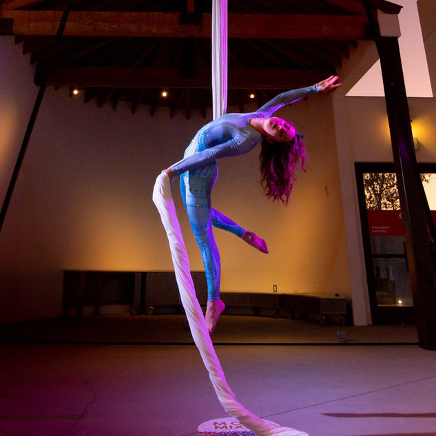 Aerial Silks Performance for AppFolio's 2019 Customer Conference
