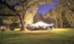 Tent in Lights_edited.jpg