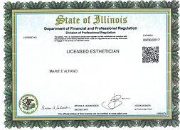 Esthetics License