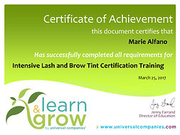 Lash & Brow Tint Certification