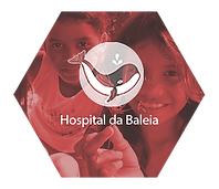 Hospital da Baleia TM Engenharia