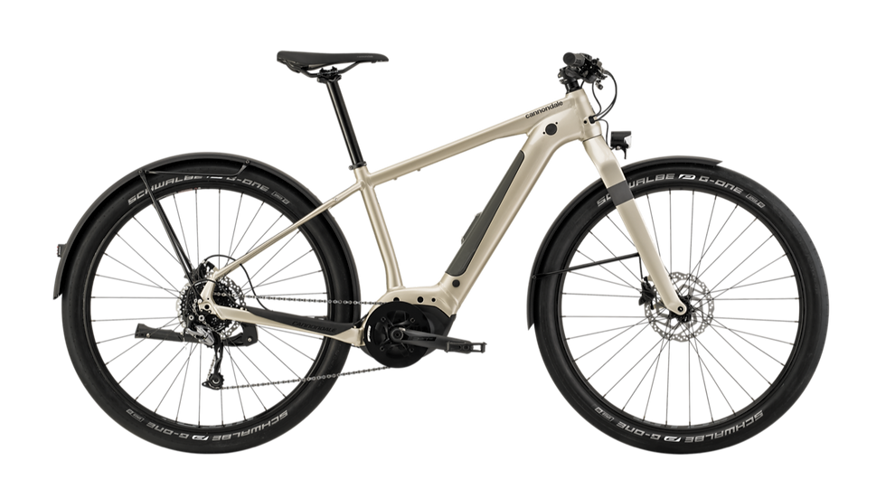 Cannondale Canvas Neo 2 - In Stock