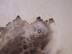 Sandy Denman III, 3x5 ft, acrylic.
