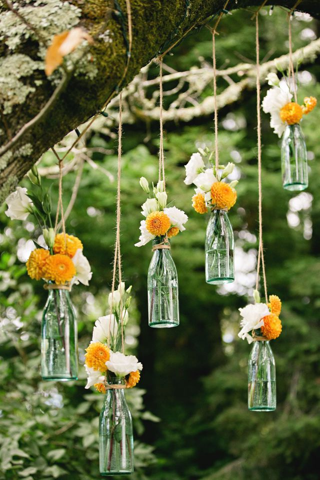 suspendre-des-bouteilles-en-verre-a-un-arbre-du-jardin_5627075