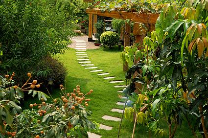jardin avec cheminement