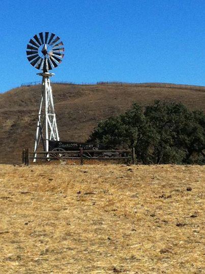windmill ranch.jpg