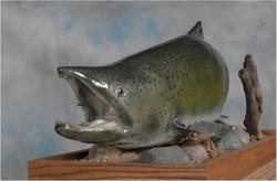 3 Salmon