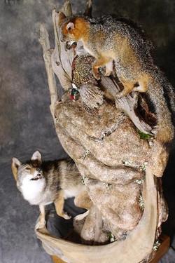 124-wolf-w-fox-pheasant