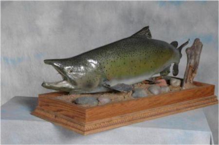 2 Salmon
