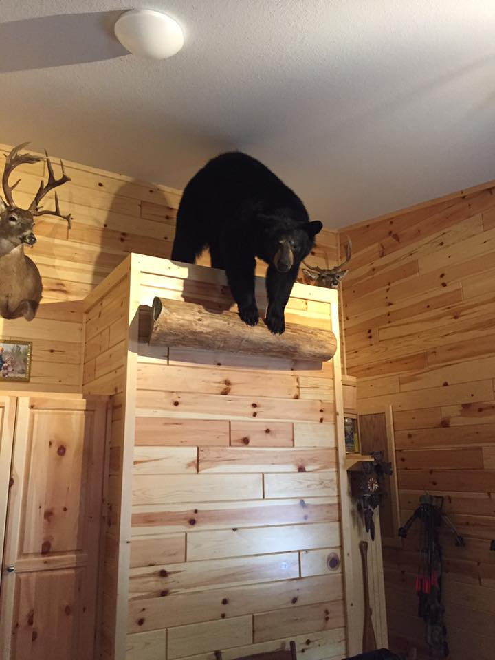 6 Custom Bear