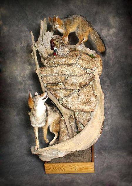 Fox | Wolf | Pheasant