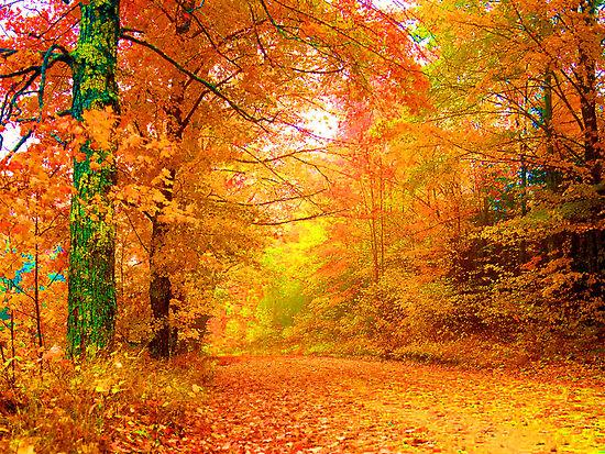 fall-vermont-autumn.jpg