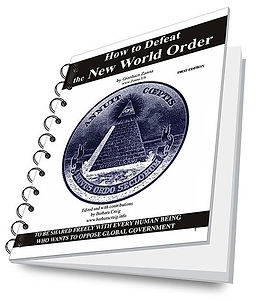 How to defeat the New World Order free ebook