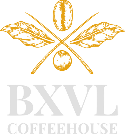 BXVL_Logo_Gold_Gray_1.png