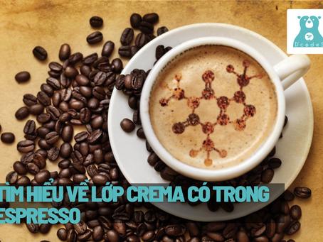 Crema là gì? Bạn đã biết hết về lớp crema có trong một tách Espresso?