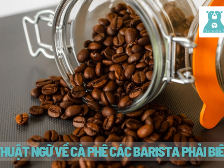 Các thuật ngữ về cà phê các Barista nhất định phải biết