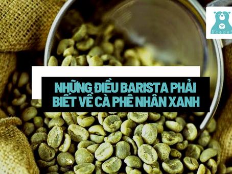Cà phê nhân xanh là gì? Những điều Barista phải biết về cà phê nhân xanh