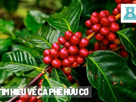Tìm hiểu về cà phê hữu cơ