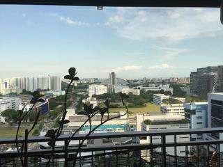 City View .jpeg