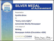 Silver Award Announced on Zoom.jpeg