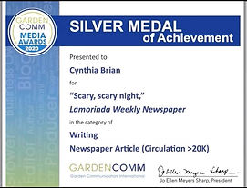 Silver Award Announced on Zoom.jpeg