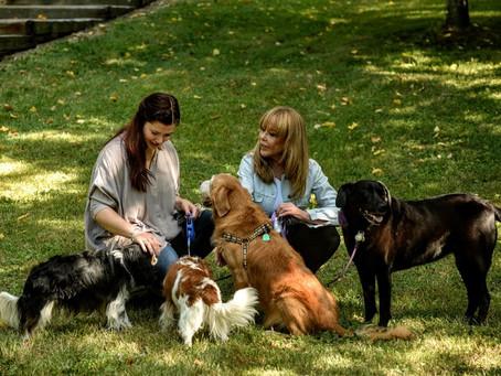 Senior Planning, Halloween with Pets, Vet Visits