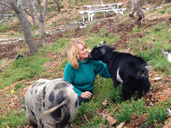Cynthia and her animals